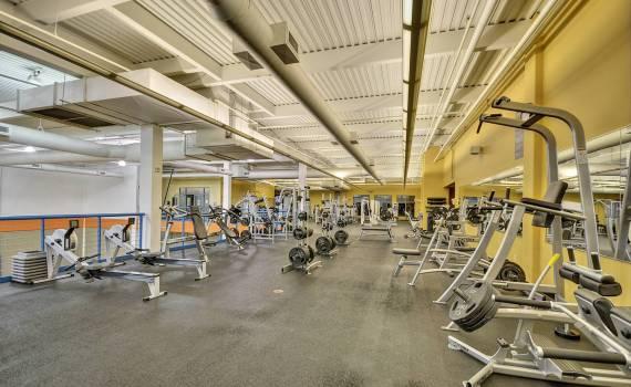 Website gym (1)