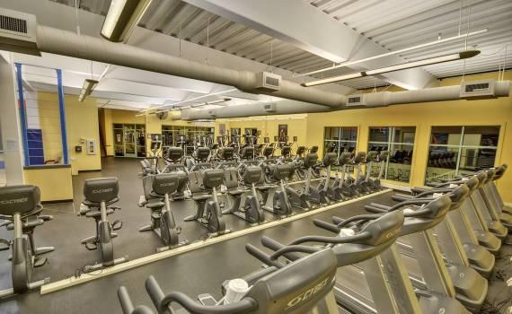 Website gym